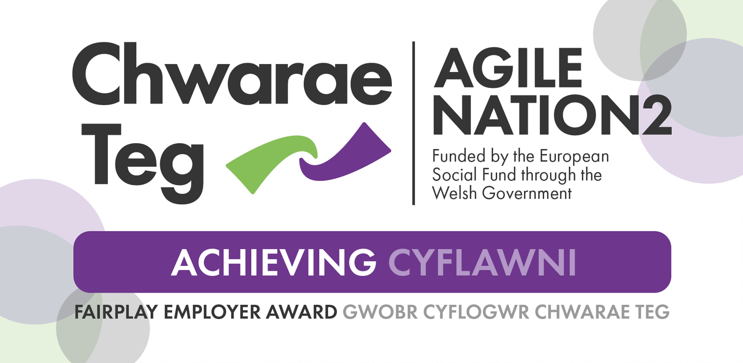 CatSci Receives Chwarae Teg's FairPlay Employer 'Achieving' Award